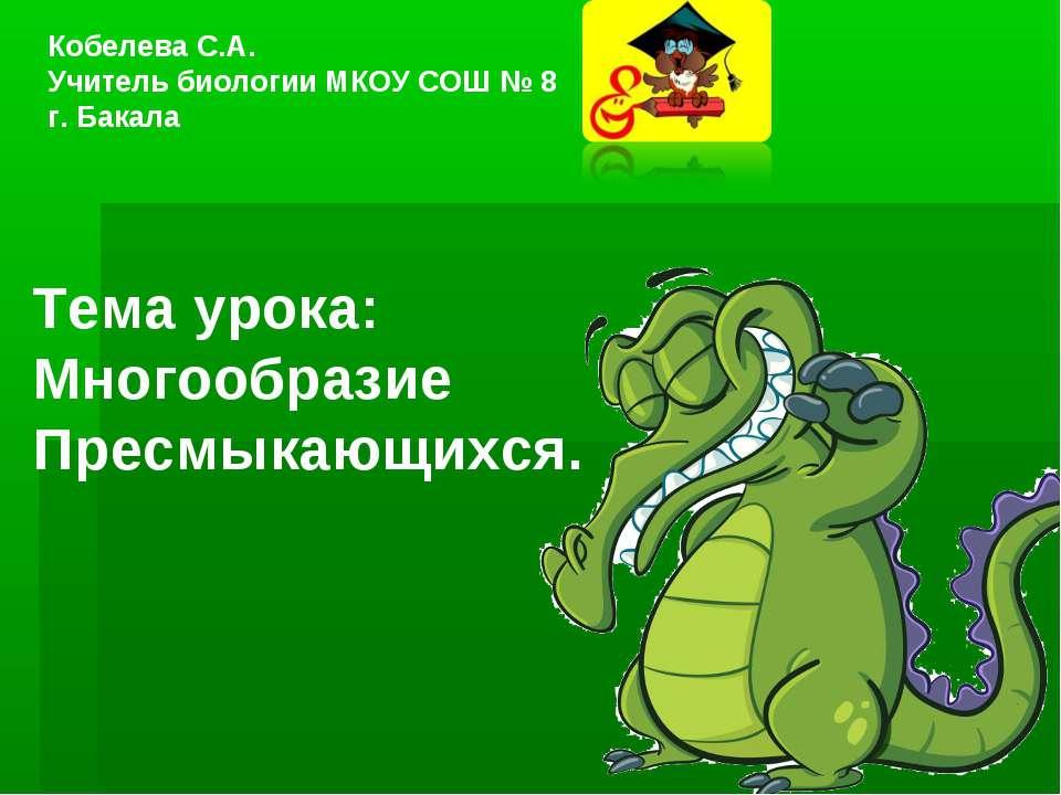 Тема урока: Многообразие Пресмыкающихся. Кобелева С.А. Учитель биологии МКОУ ...