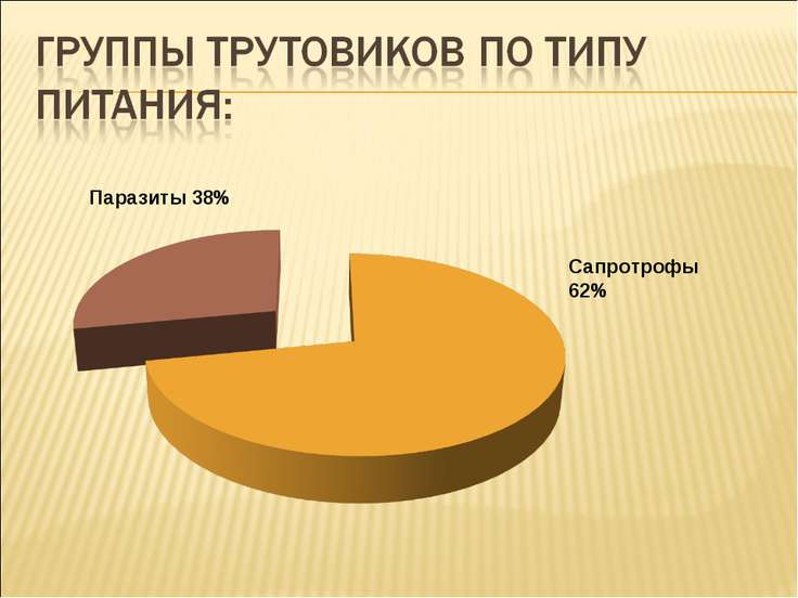 Паразиты 38% Сапротрофы 62%