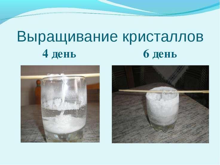 Выращивание кристаллов 4 день 6 день
