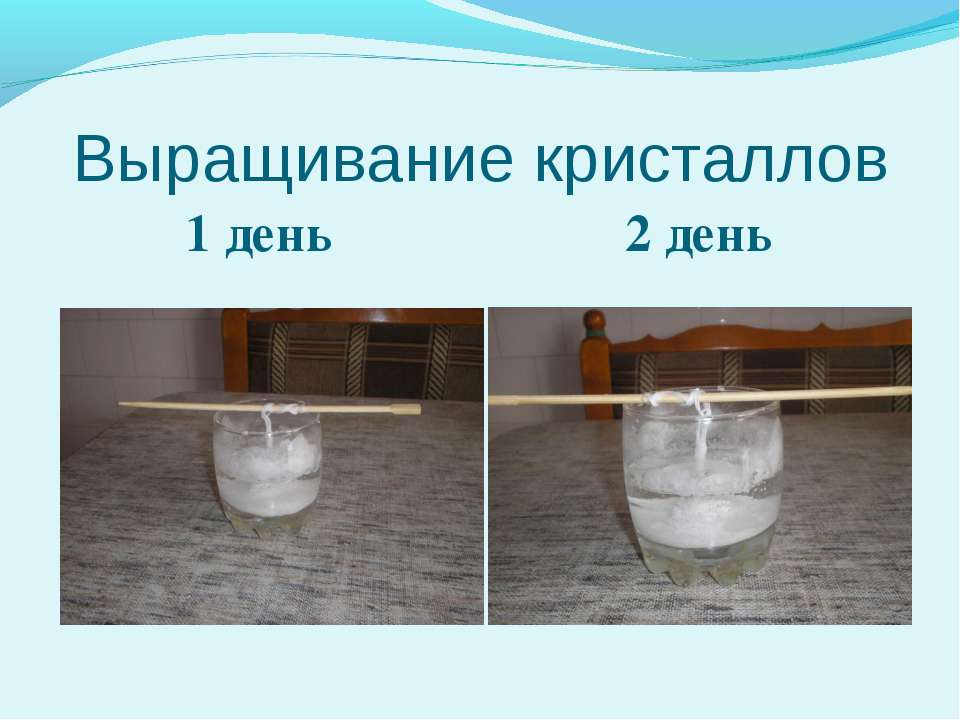 Выращивание кристаллов 1 день 2 день