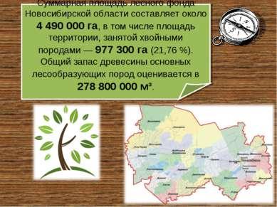 Суммарная площадь лесного фонда Новосибирской области составляет около 4490...
