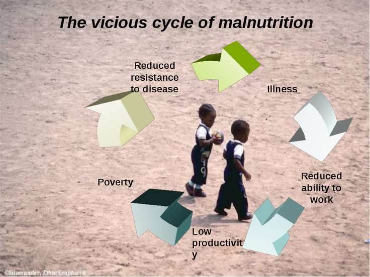 The vicious cycle of malnutrition