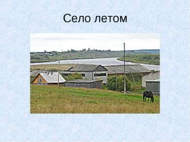 Село летом
