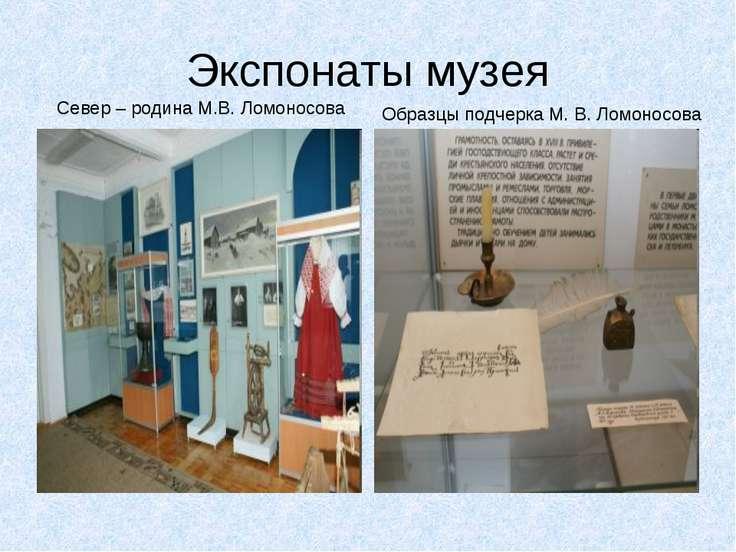Экспонаты музея Север – родина М.В. Ломоносова Образцы подчерка М. В. Ломоносова