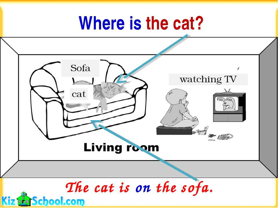 Where is the cat? The cat is on the sofa.