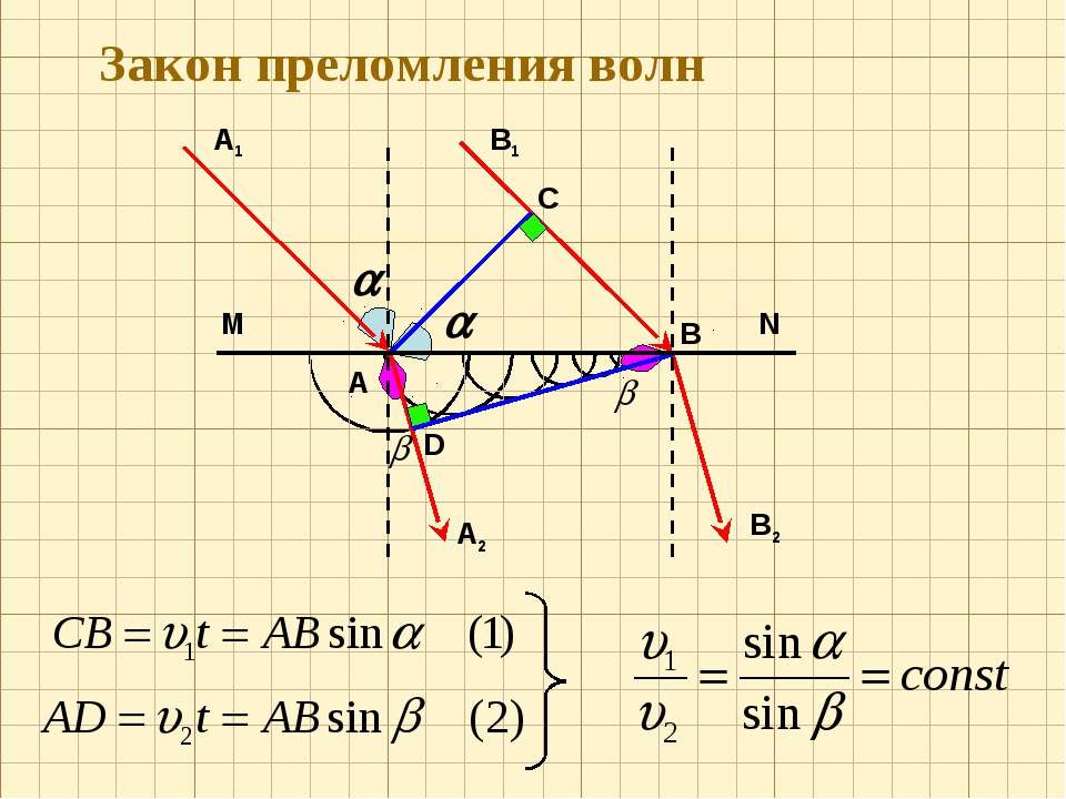 C В1 M N А1 А В D А2 В2 Закон преломления волн