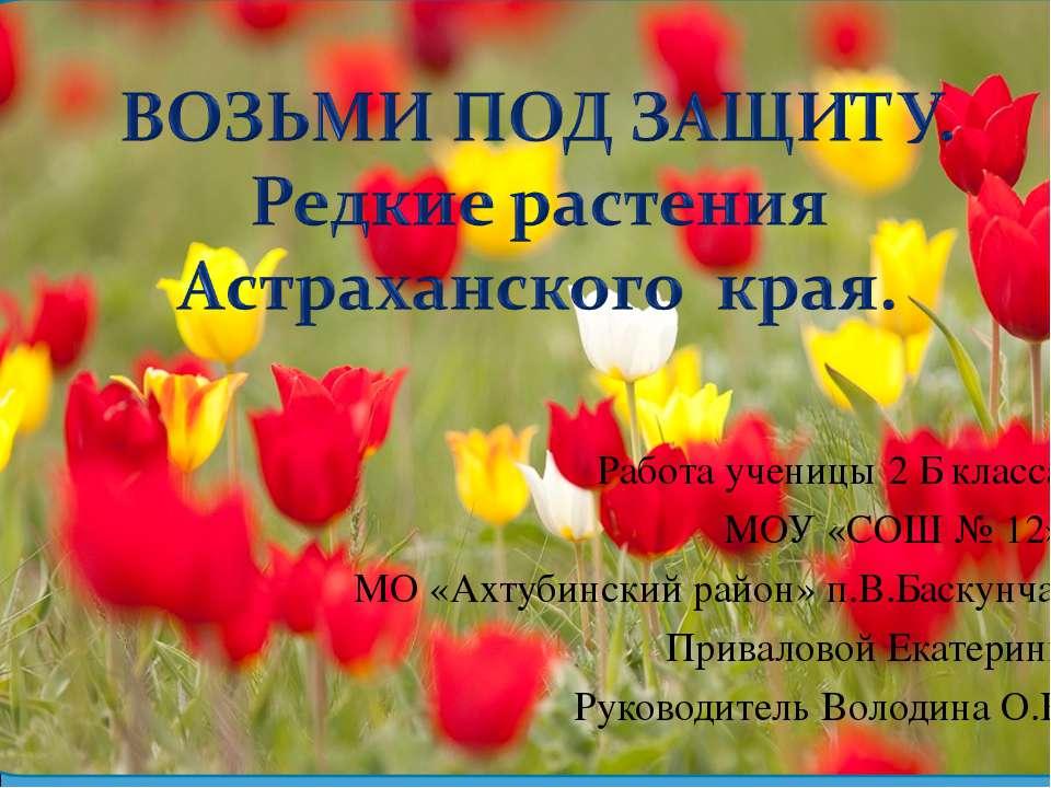 Работа ученицы 2 Б класса МОУ «СОШ № 12» МО «Ахтубинский район» п.В.Баскунчак...