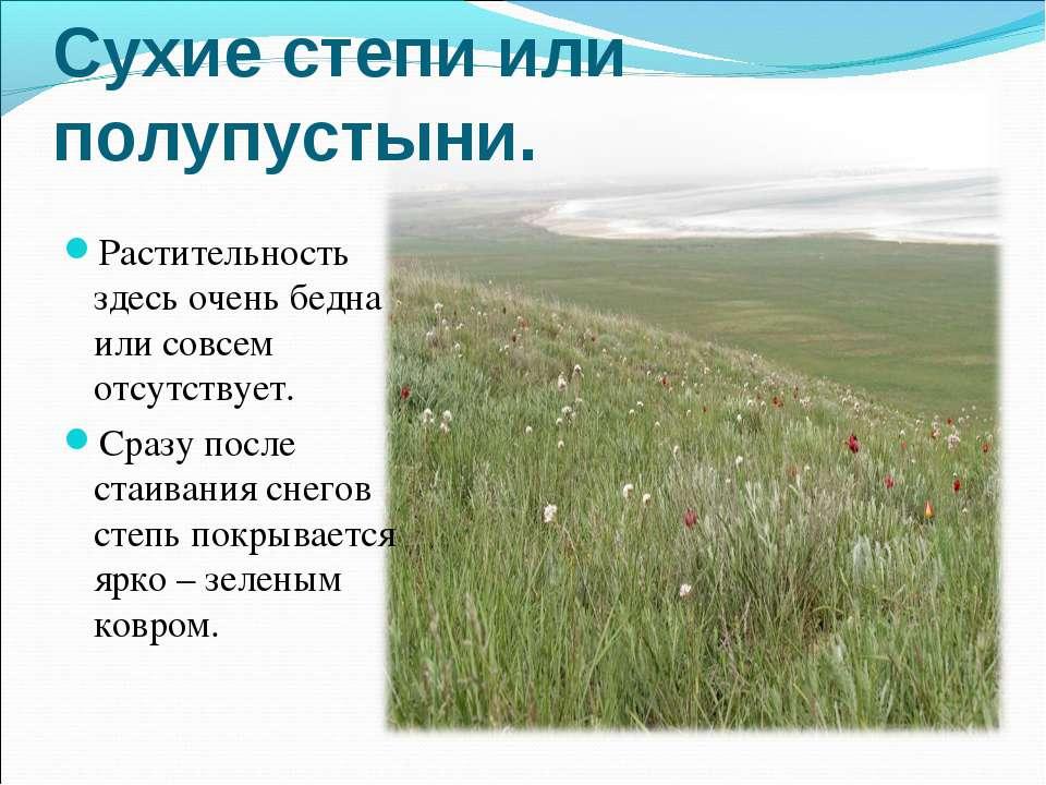 Сухие степи или полупустыни. Растительность здесь очень бедна или совсем отсу...