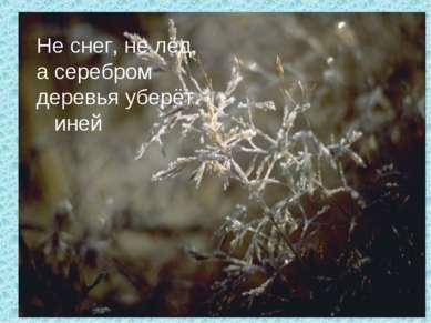 Не снег, не лёд, а серебром деревья уберёт. иней