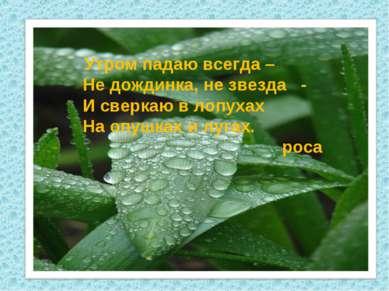 Утром падаю всегда – Не дождинка, не звезда - И сверкаю в лопухах На опушках ...