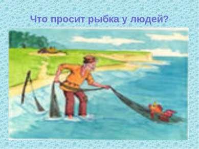 Что просит рыбка у людей?