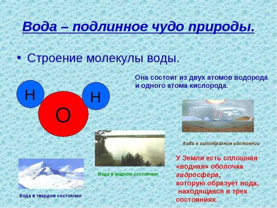 Вода – подлинное чудо природы. Строение молекулы воды. Она состоит из двух ат...