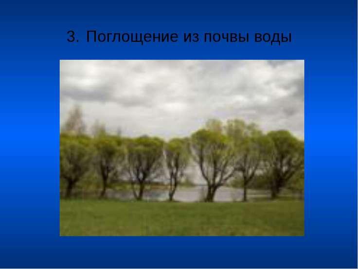 3. Поглощение из почвы воды