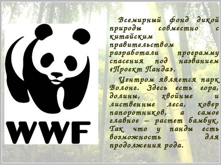 Всемирный фонд дикой природы совместно с китайским правительством разработали...