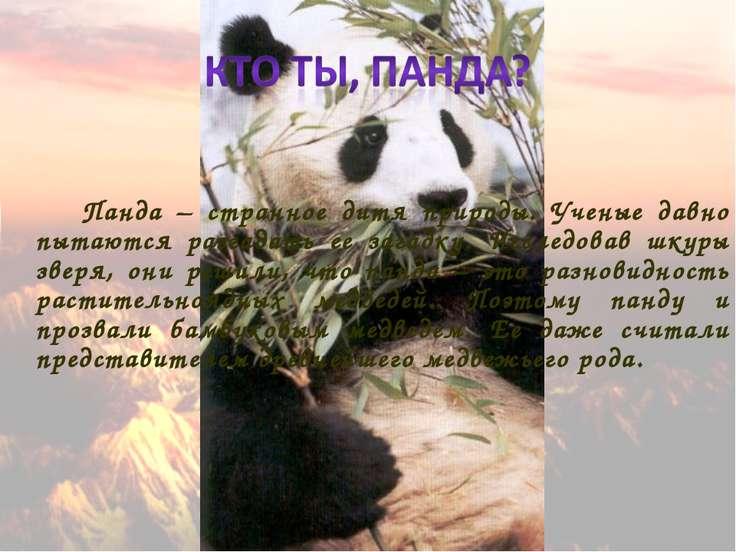 Панда – странное дитя природы. Ученые давно пытаются разгадать ее загадку. Ис...