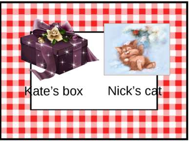 Kate's box Nick's cat