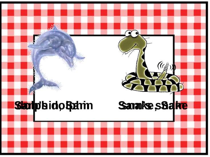 dolphin, Sam Sam's dolphin snake, Sam Sam's snake