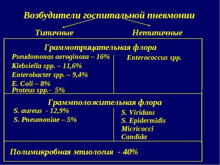 Возбудители госпитальной пневмонии Граммотрицательная флора Pseudomonas aerog...