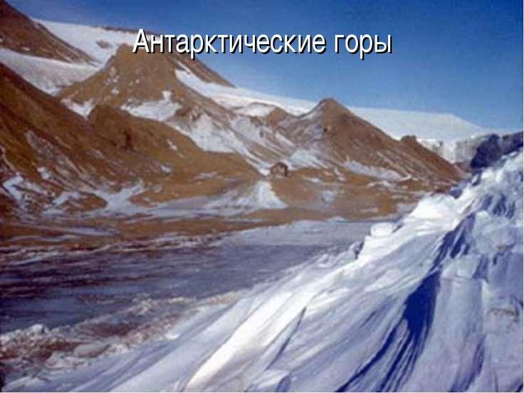 Антарктические горы