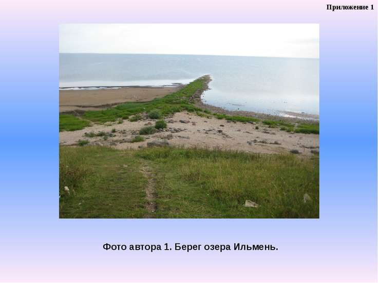 Фото автора 1. Берег озера Ильмень. Приложение 1