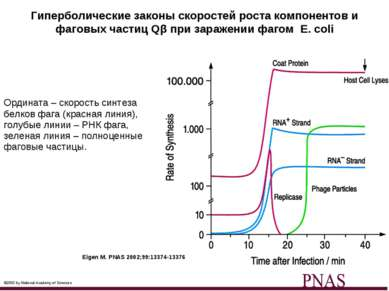 Гиперболические законы скоростей роста компонентов и фаговых частиц Qβ при за...