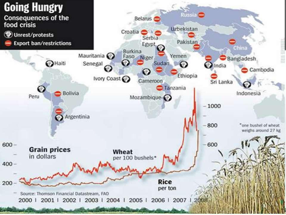 Биологические основы «Глобального кризиса»
