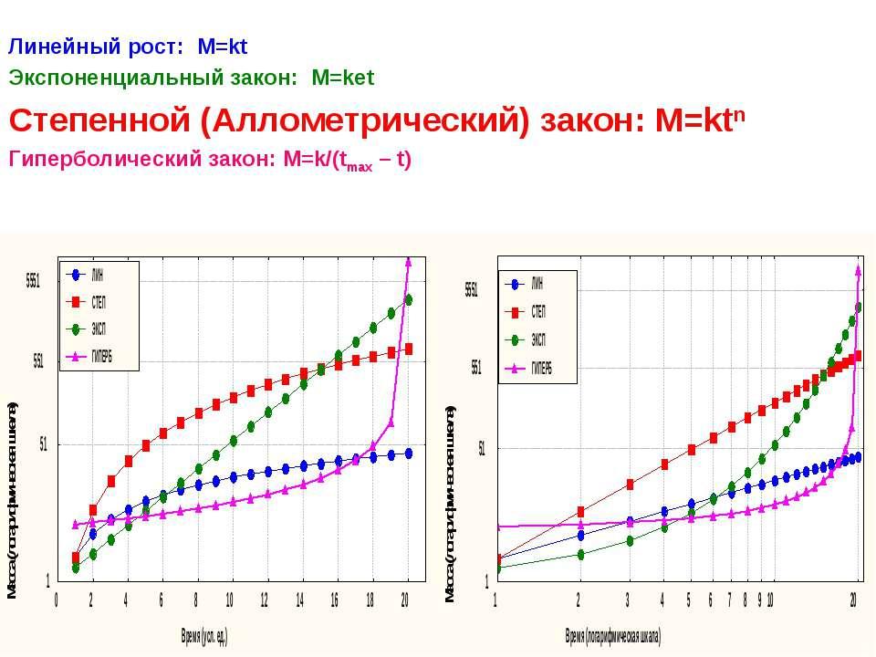 Линейный рост: М=kt Экспоненциальный закон: М=ket Степенной (Аллометрический)...