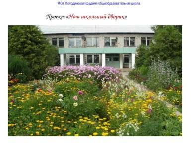 МОУ Колодинская средняя общеобразовательная школа Проект «Наш школьный дворик»