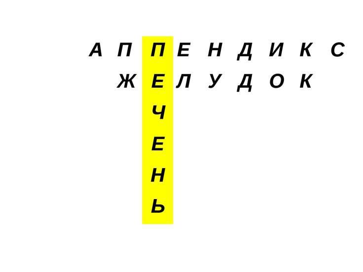 А П П Е Н Д И К С Ж Е Л У Д О К Ч Е Н Ь