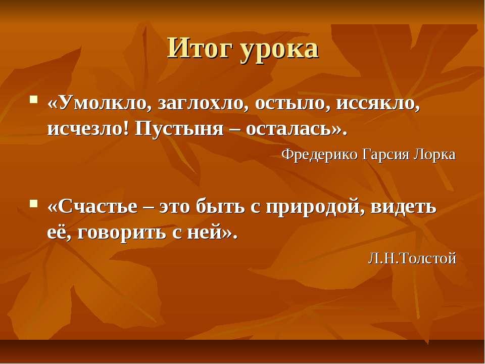 Итог урока «Умолкло, заглохло, остыло, иссякло, исчезло! Пустыня – осталась»....