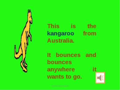 This is the kangaroo from Australia. It bounces and bounces anywhere it wants...