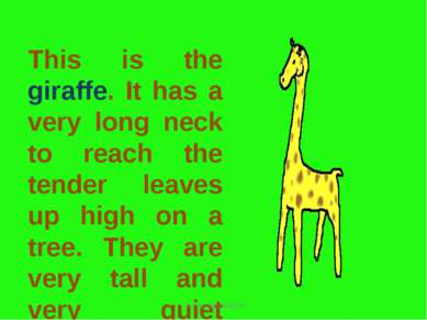 This is the giraffe. It has a very long neck to reach the tender leaves up hi...