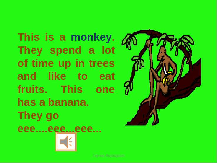 This is a monkey. They spend a lot of time up in trees and like to eat fruits...