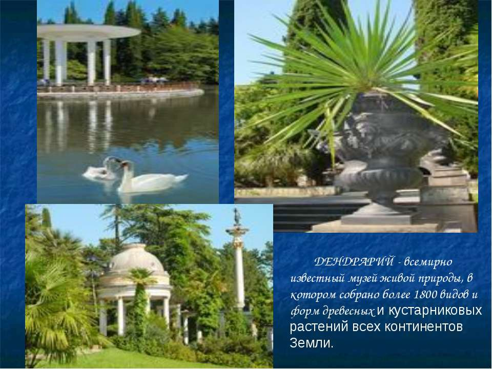 Дендрарий ДЕНДРАРИЙ - всемирно известный музей живой природы, в котором собра...