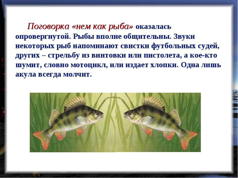 Поговорка «нем как рыба» оказалась опровергнутой. Рыбы вполне общительны. Зву...