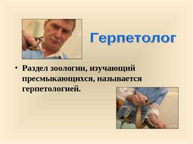 Раздел зоологии, изучающий пресмыкающихся, называется герпетологией.