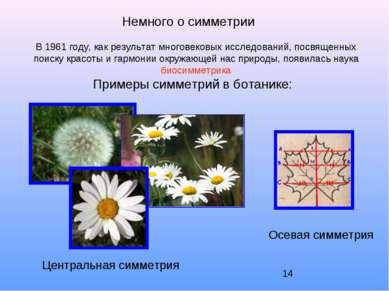 Немного о симметрии В 1961 году, как результат многовековых исследований, пос...