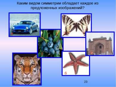 Каким видом симметрии обладает каждое из предложенных изображений? 1 2 3 4 5 6