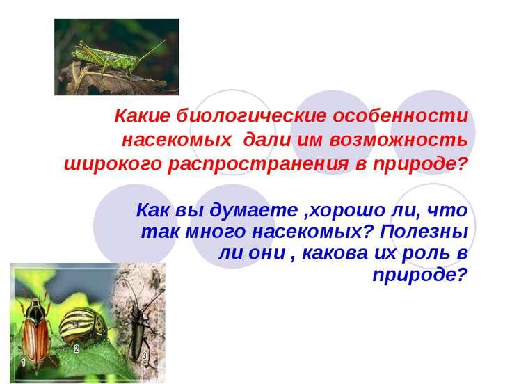Какие биологические особенности насекомых дали им возможность широкого распро...