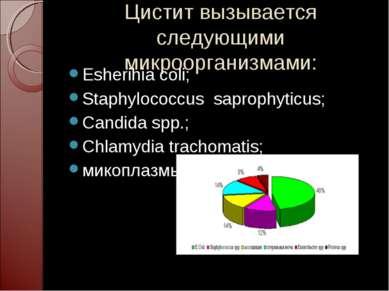 Цистит вызывается следующими микроорганизмами: Esherihia coli; Staphylococcus...