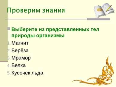 Выберите из представленных тел природы организмы Магнит Берёза Мрамор Белка К...
