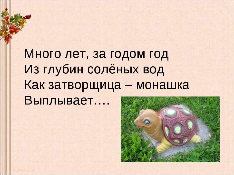 Много лет, за годом год Из глубин солёных вод Как затворщица – монашка Выплыв...