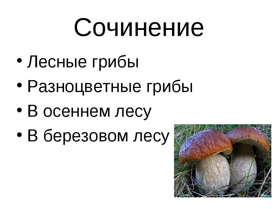 Сочинение Лесные грибы Разноцветные грибы В осеннем лесу В березовом лесу