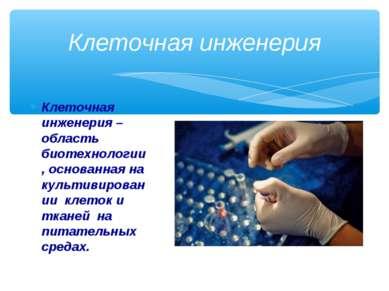 Клеточная инженерия – область биотехнологии, основанная на культивировании кл...