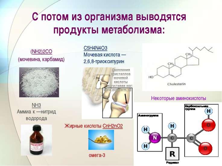 С потом из организма выводятся продукты метаболизма: (NH2)2CO (мочевина, карб...