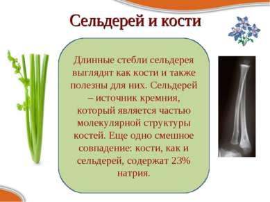 Сельдерей и кости Длинные стебли сельдерея выглядят как кости и также полезны...