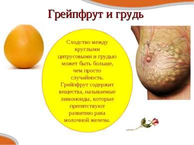 Грейпфрут и грудь Сходство между круглыми цитрусовыми и грудью может быть бол...