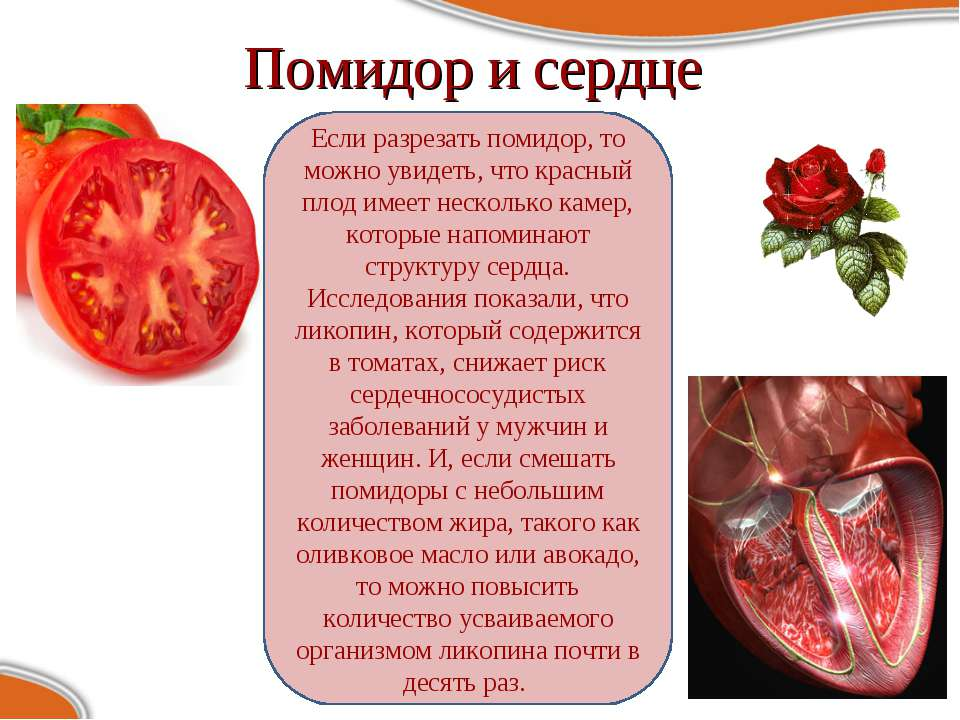 Помидор и сердце Если разрезать помидор, то можно увидеть, что красный плод и...