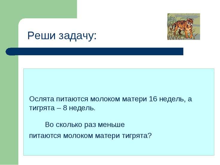 Реши задачу: Ослята питаются молоком матери 16 недель, а тигрята – 8 недель. ...