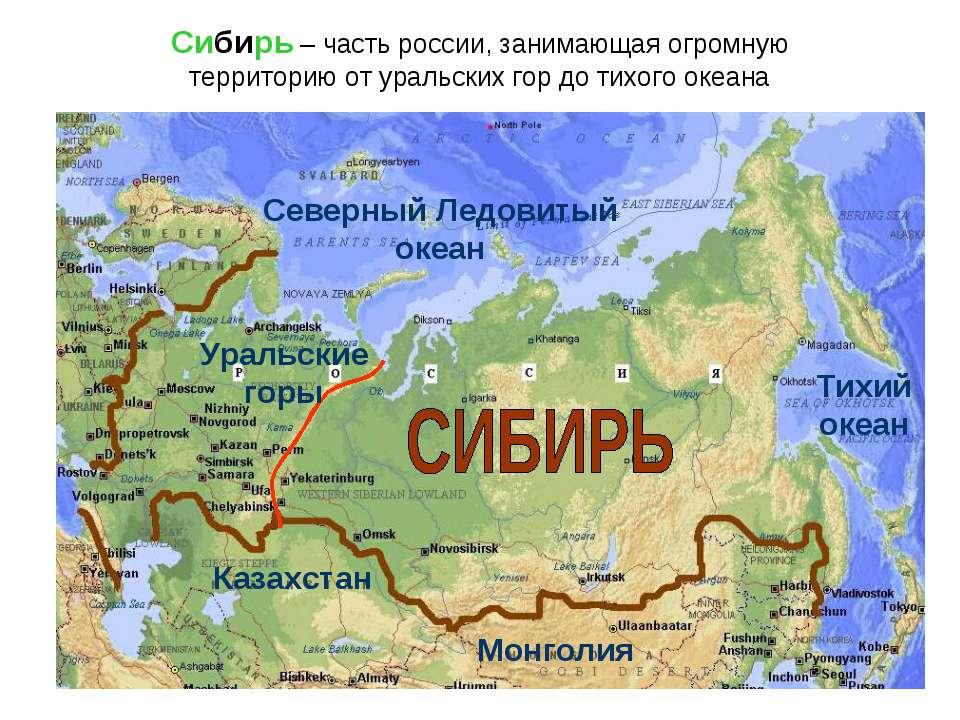 Сибирь – часть россии, занимающая огромную территорию от уральских гор до тих...